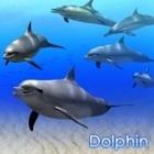 DigiFish Dolphin <ドルフィン> (ダウンロード版)