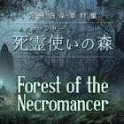 背景音楽素材集・死霊使いの森