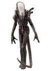 "Alien - Xenomorph ""Big Chap"""