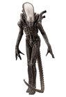 """Alien - Xenomorphe """"Big Chap"""""""