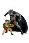 DC Universe - Batman & Robin