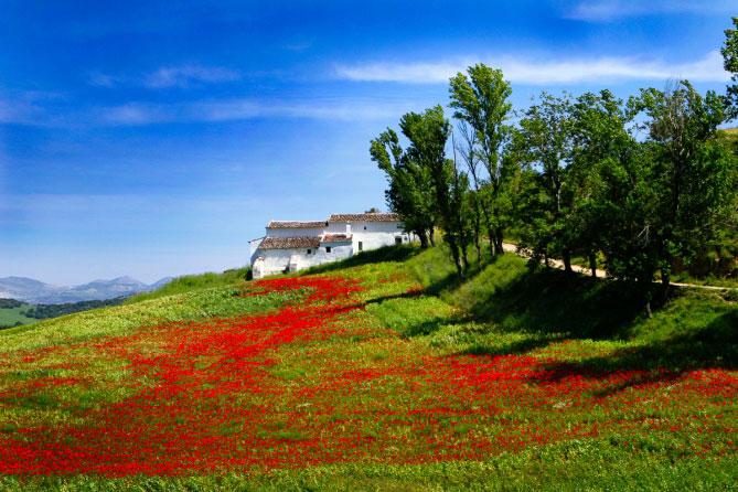 exposure-6-examples-Landscape-Fuji-Velvia-50-669x446.jpg