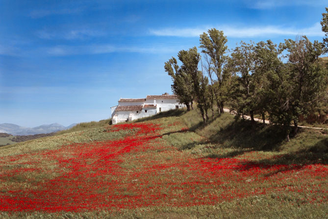 exposure-6-examples-Landscape-Kodachrome-II-1962-74-669x446.jpg